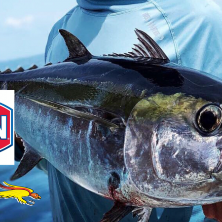 Top 5 Must Have Items for The Beginner Angler