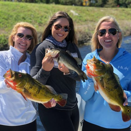 Bass Lures You Can Depend On