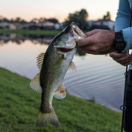 Fishing Tips for Colder Temps